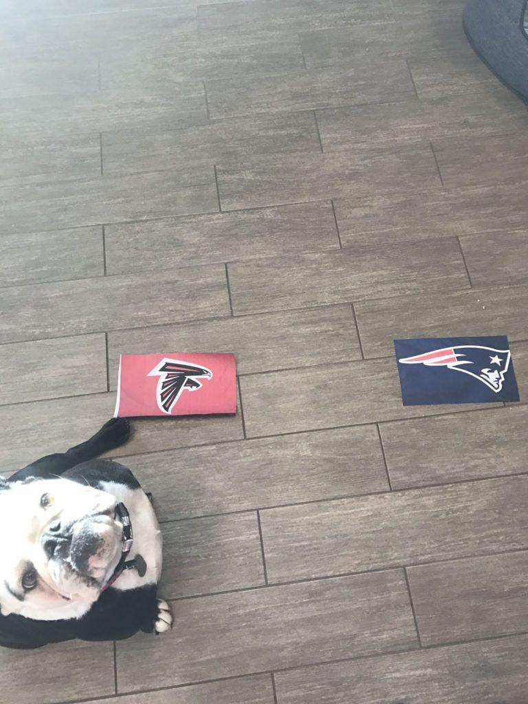 Betsy Ross Super Bowl Prediction 2017 Atlanta Flacons