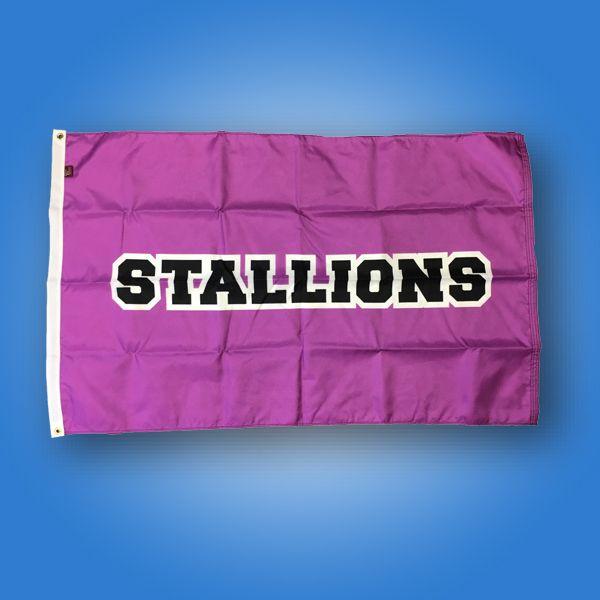 Custom Flag Company Stallions