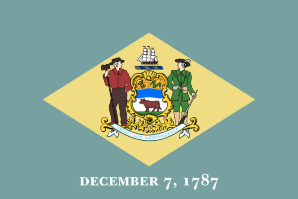 Custom Flag Company State of Delaware Flag