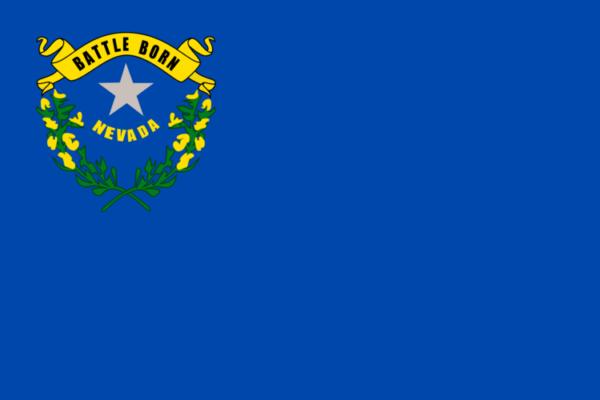 Custom Flag Company State of Nevada Flag