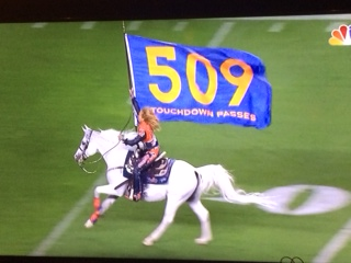 509 flag Manning Record